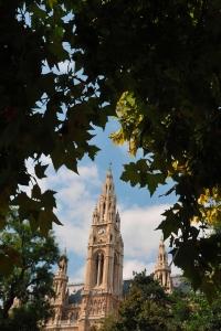 Farbphotographie: Blick vom Rathauspark zum Rathaus